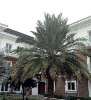 Apartments In Nigeria
