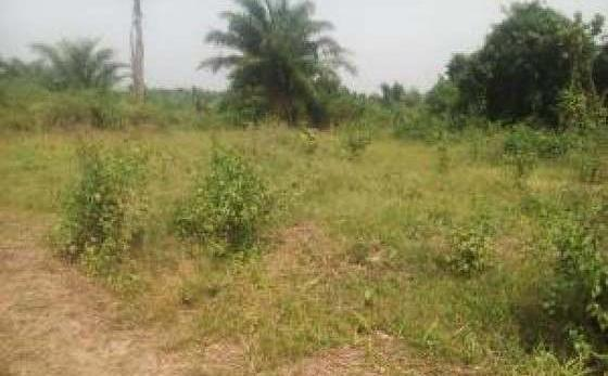 Empty Land For Sale In ABA Abia Sta..